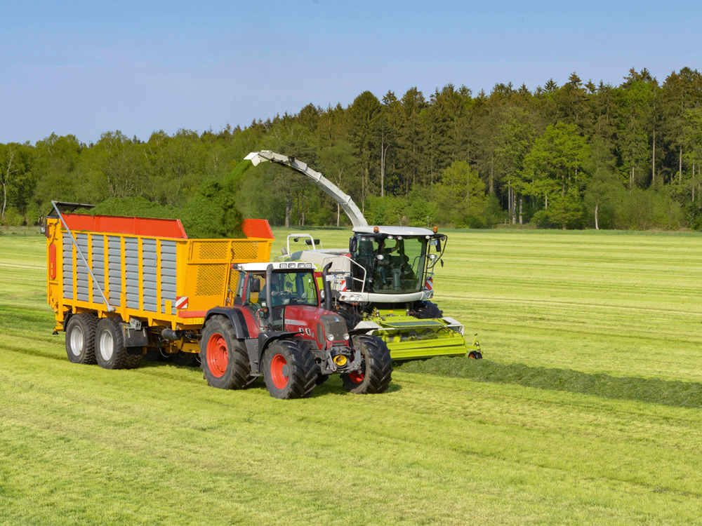 BONSILAGE FIT G wandelt Zucker in Propylenglykol um